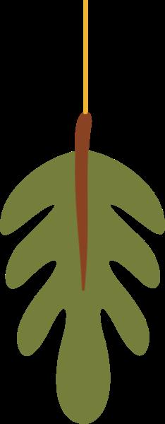 植物绿叶叶子树叶自然