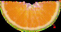 水果鲜果橙子生鲜食物