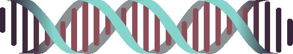 基因螺旋基因鏈醫療科學