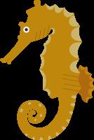 sea horseoceancreaturesea creaturesea animal