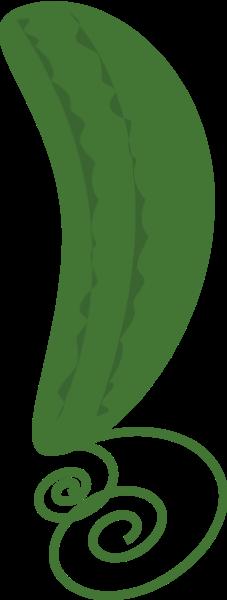 瓜藤苦瓜丝瓜绿植植物
