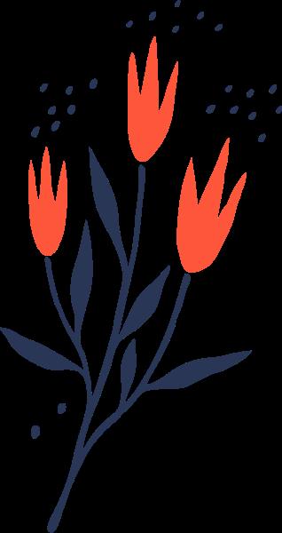 花花朵花卉植物自然