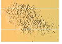 粉末金色雜點粒子商務