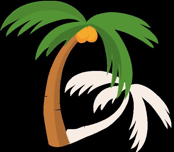 椰子树树植物沙滩夏天