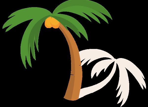 树椰子树植物沙滩海边