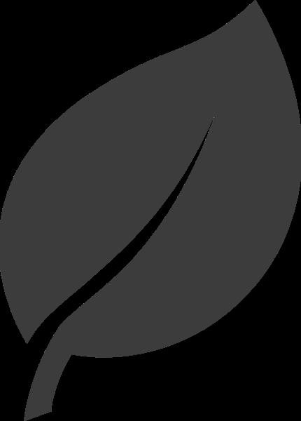 叶子植物叶片树叶装饰