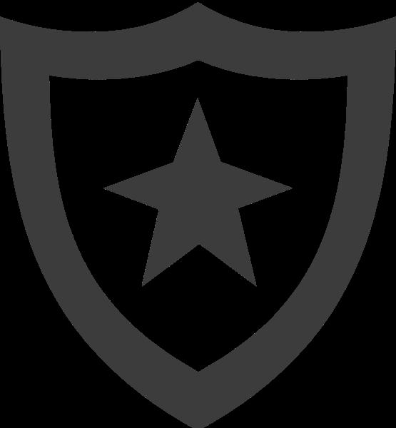 盾牌星星徽章标识标志