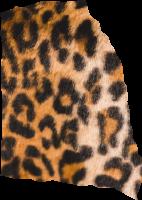 纹理装饰豹纹撕纸碎纸屑