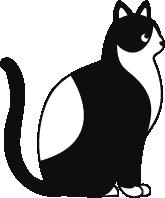 猫动物猫咪小猫卡通