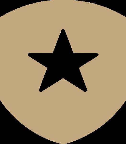 五角星剪影几何装饰肩章