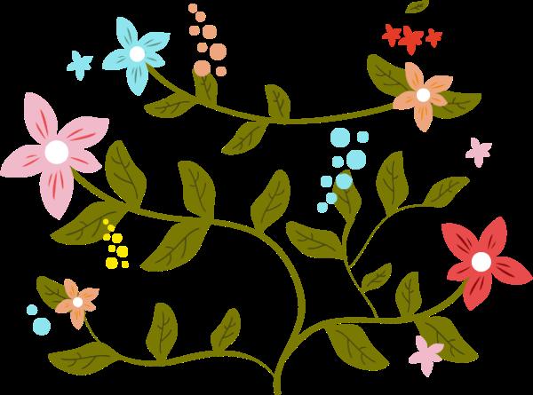 花卉花花朵春天节日