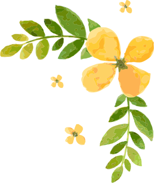 花边边框植物绿植花