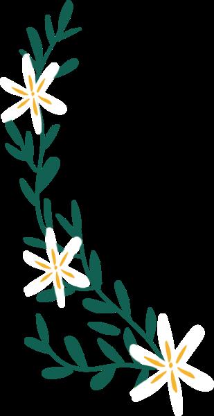 花纹花花卉花朵装饰
