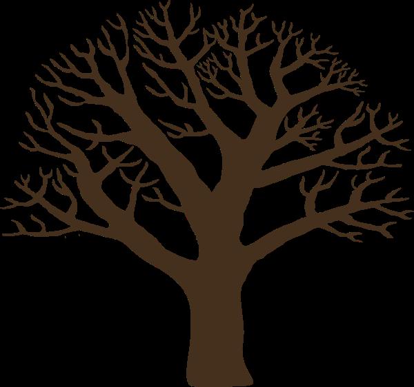 树木树干枯树枯枝