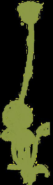 花朵植物绿色植物水生植物绿植