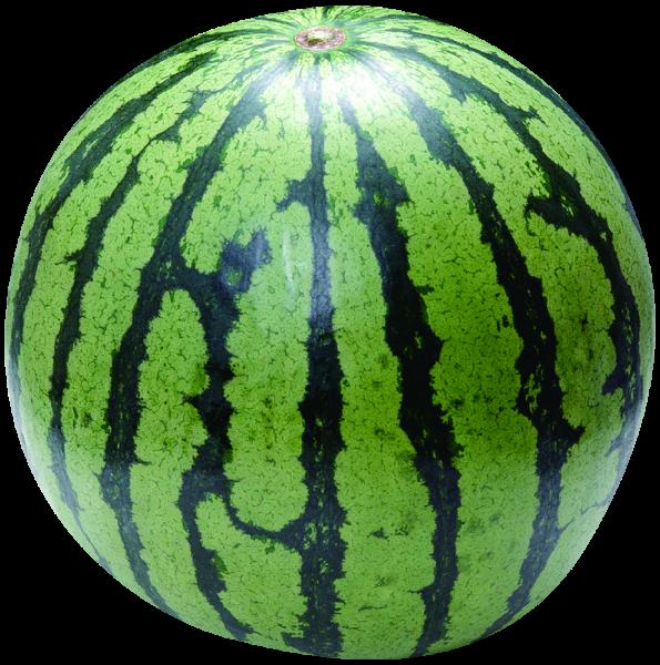 西瓜水果位圖產品實物