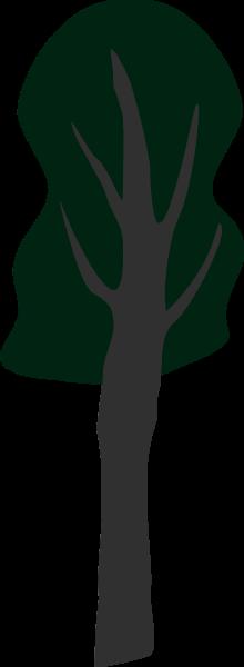树树木植物绿植绿树