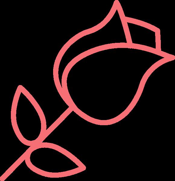 花花朵花卉玫瑰镂空