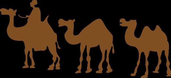 骆驼驼峰动物沙漠卡通