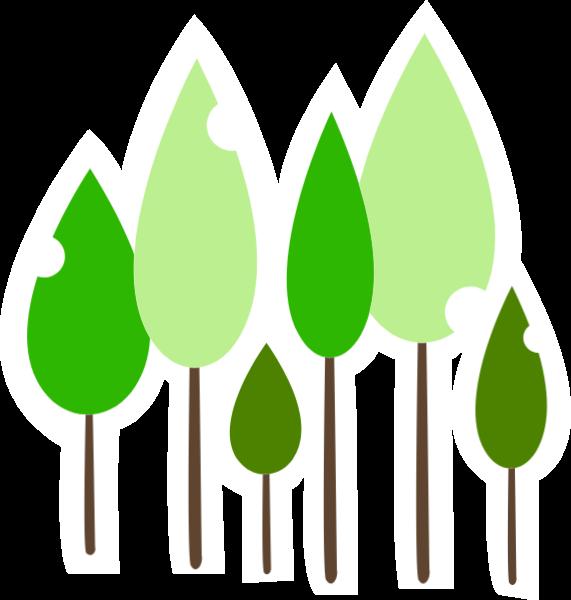 树林森林树木植物绿叶