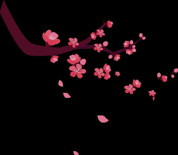 桃花花卉花花朵春天