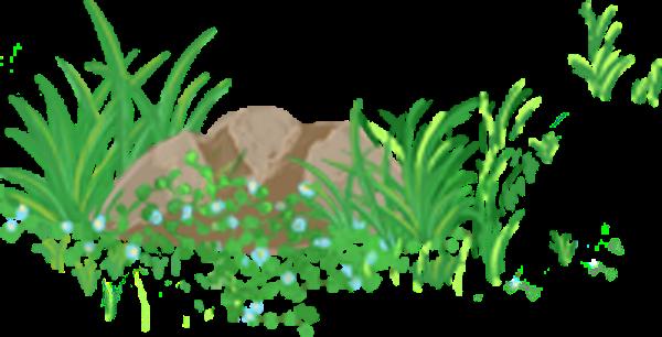 石头植物草地草丛树木