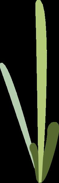 树叶植物草地线条小草