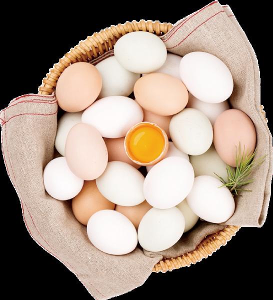鸡蛋菜筐实物抠图美食