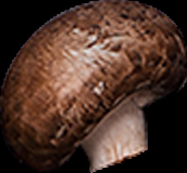 香菇蘑菇调料蔬菜抠图
