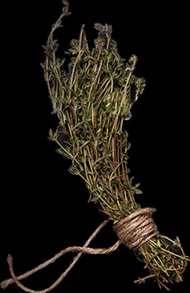 草植物干草佐料调料