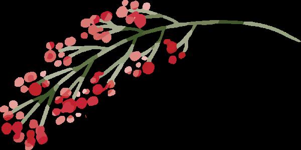 花花卉花朵鲜花植物