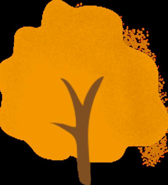 树木植物树黄色秋天
