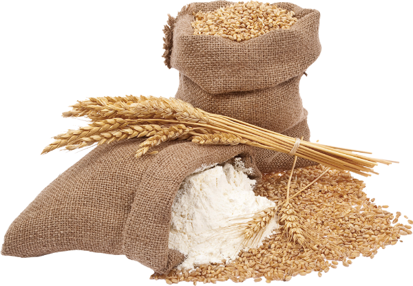 麦子粮食袋子布袋小麦