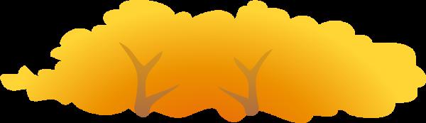 树植物树木森林枫叶