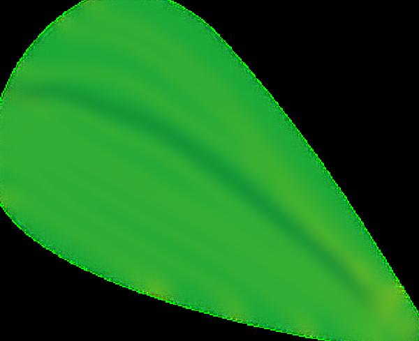 草植物叶子树叶绿植