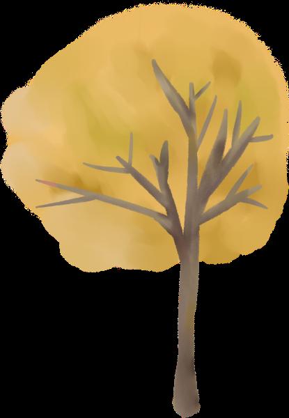 树树木树干大树植物