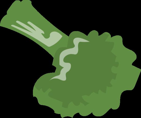 西兰花花菜青花菜花椰菜蔬菜
