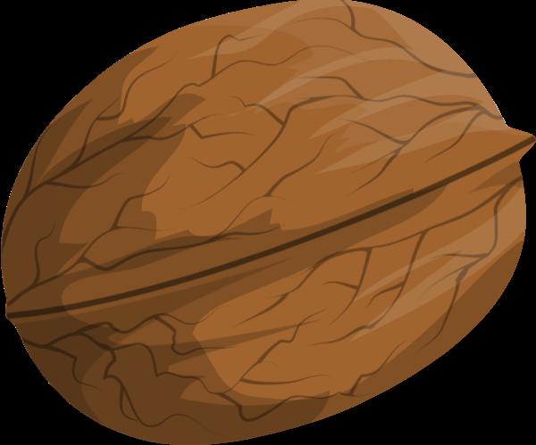 核桃坚果食物美食食品