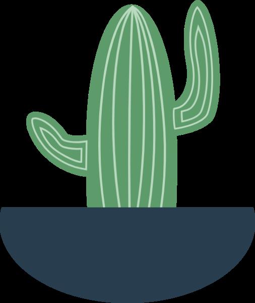 仙人掌植物盆栽养护绿植