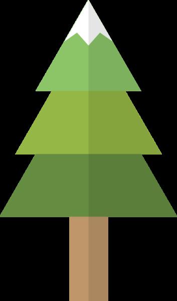 圣诞树树木树大树装饰