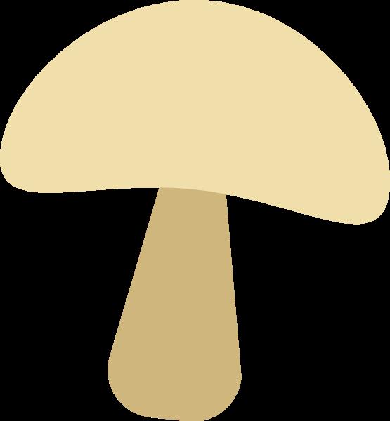 蘑菇菌类松茸美味美食