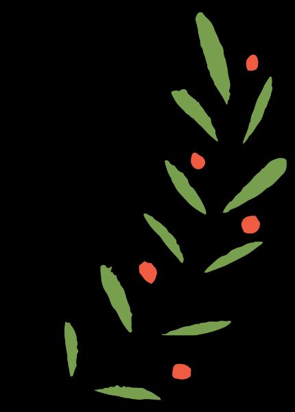 树叶叶子绿叶果实植物