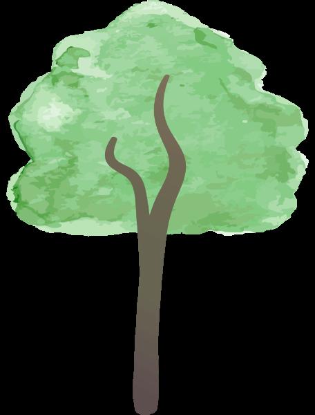 树木树树干枝干枝桠