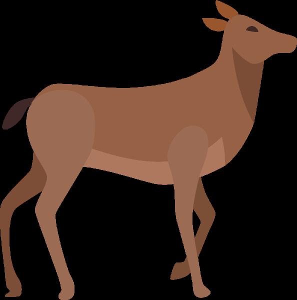 马驴动物卡通可爱