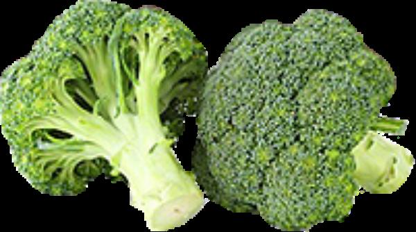 西兰花抠图照片实物花椰菜