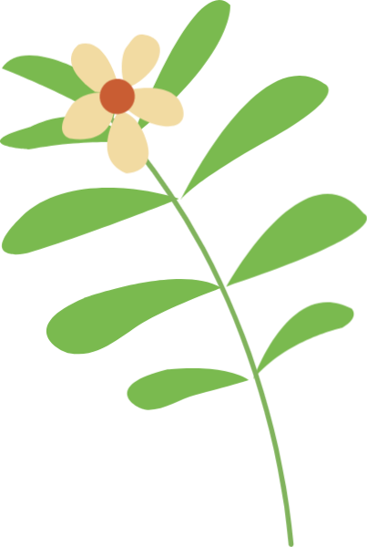 花朵枝叶叶子花瓣花