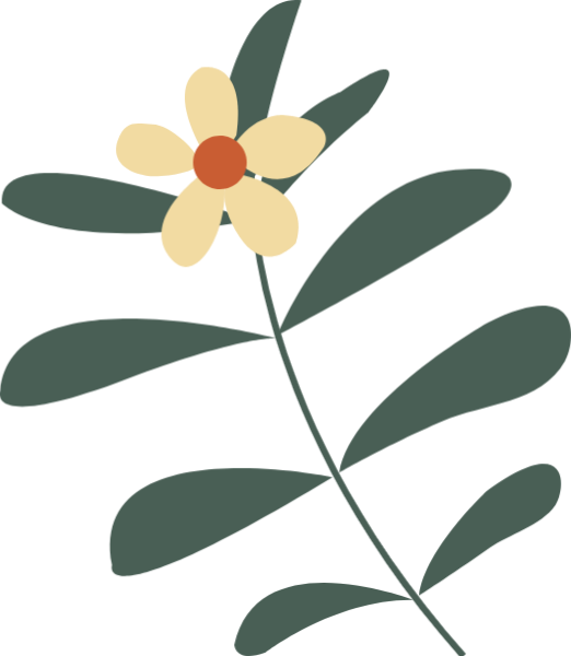 花花朵花瓣叶子花卉