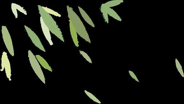 叶叶子绿叶树叶卡通