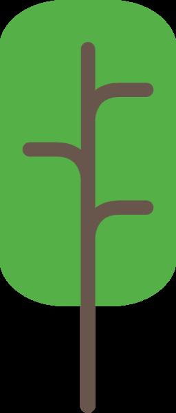 树木树叶树植物绿植