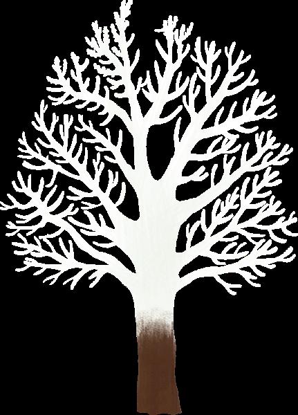 树干枯树树树木绿植